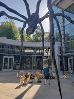 Math & Science Class MOVED to Crystal Bridges!